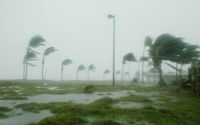 Verizon supports its customers following Hurricane Patricia